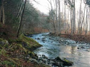 The Miller Brook runs through the Long Winter Farm. Photographer: Vermont Land Trust