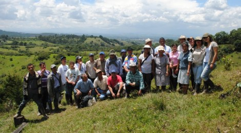 Continental reviews of integrated landscape initiatives in Africa, Latin America and Asia