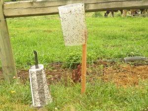 Knight Stick (left) Olson Trap (Right