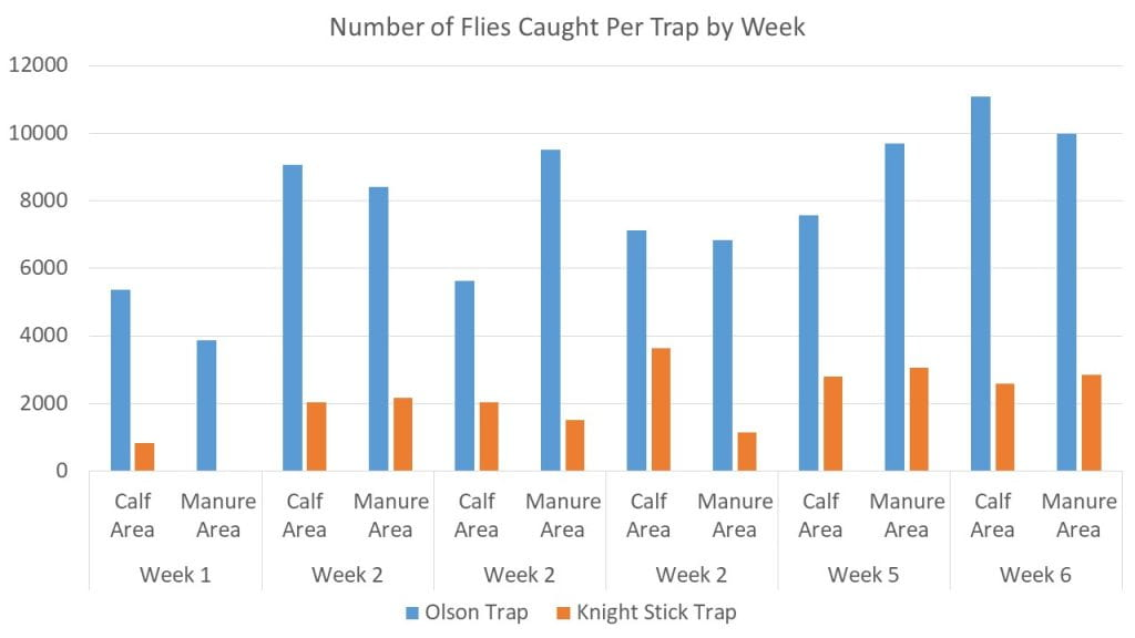 Stable Flies Caught Per Week Per Trap