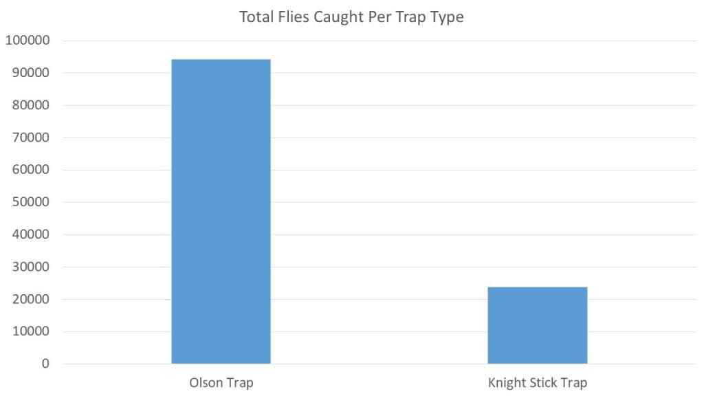 Total Amount of Stable Flies Caught Per Trap