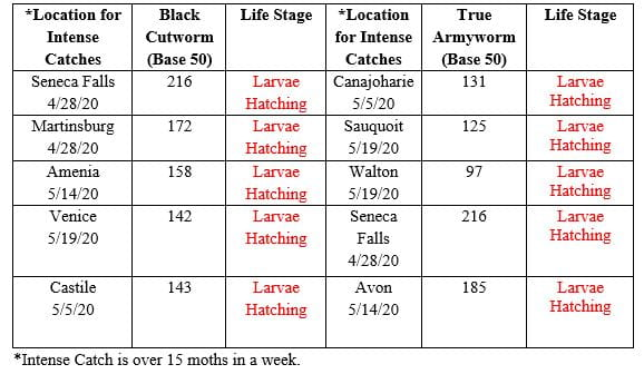 Table of the degree days for black cutworm and true armyworm