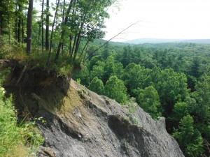 Bluffs along the Cayuga Trail