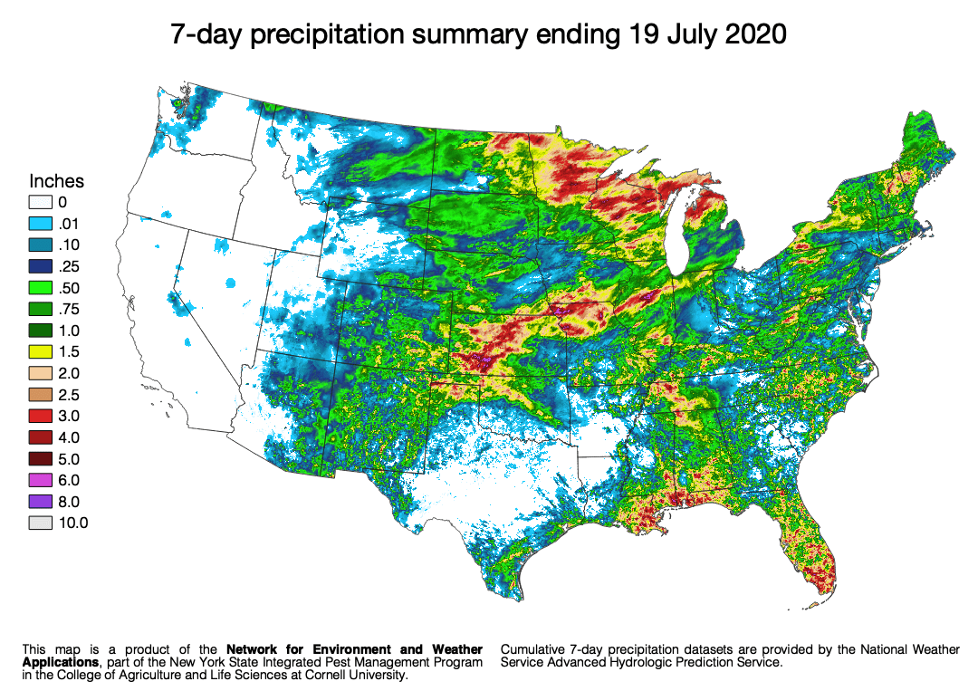 7-day rainfall totals ending 19 July 2020 for the continental United States.