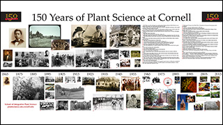 150 Years of Plant Science display in the first floor foyer.