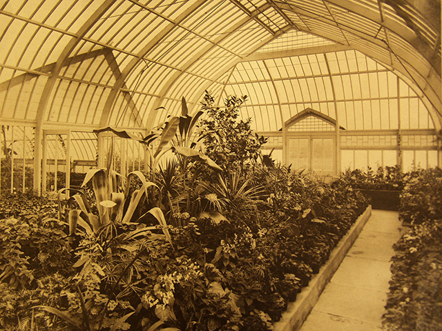 Sage Conservatory interior.