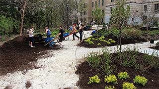 Urban Eden students installing landscape in Deans' Garden behind Warren Hall.
