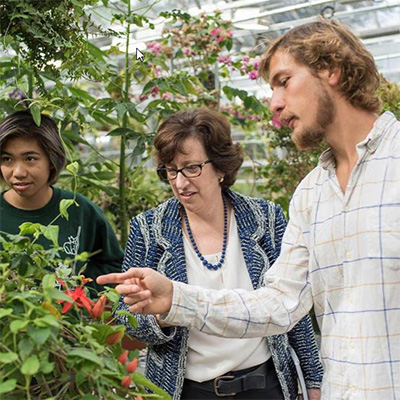 Patty Chan '18 and Nicolas Glynos '17 answer President Pollack's plant questions on tour of the Liberty Hyde Bailey Conservatory.