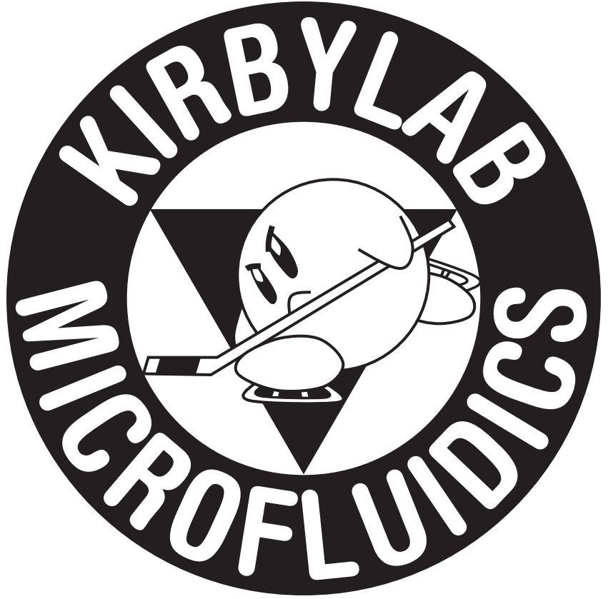 Cornell Micro/Nanofluidics Laboratory