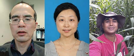 Qi Sun, Cheng Zou, Avinash Karn Headshots