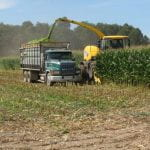 Harvesting corn silage in northern New York