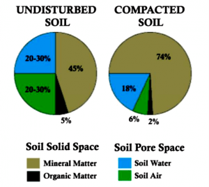 pie charts comparing undisturbed and compacted soils