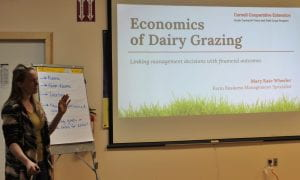 Mary Kate delivers a presentation on the economics of dairy grazing