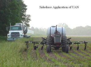 sidedress application of UAN