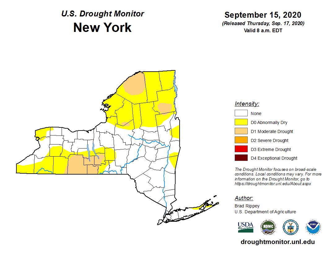 NY Drought Monitor Map