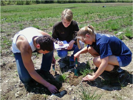 Berne/Knox/Westerlo students tallying the causes of missing corn plants.  Seedcorn maggot was the most prominent culprit.  The low-dose of seed-applied insecticide could not fully protect this early-planted field after sod.
