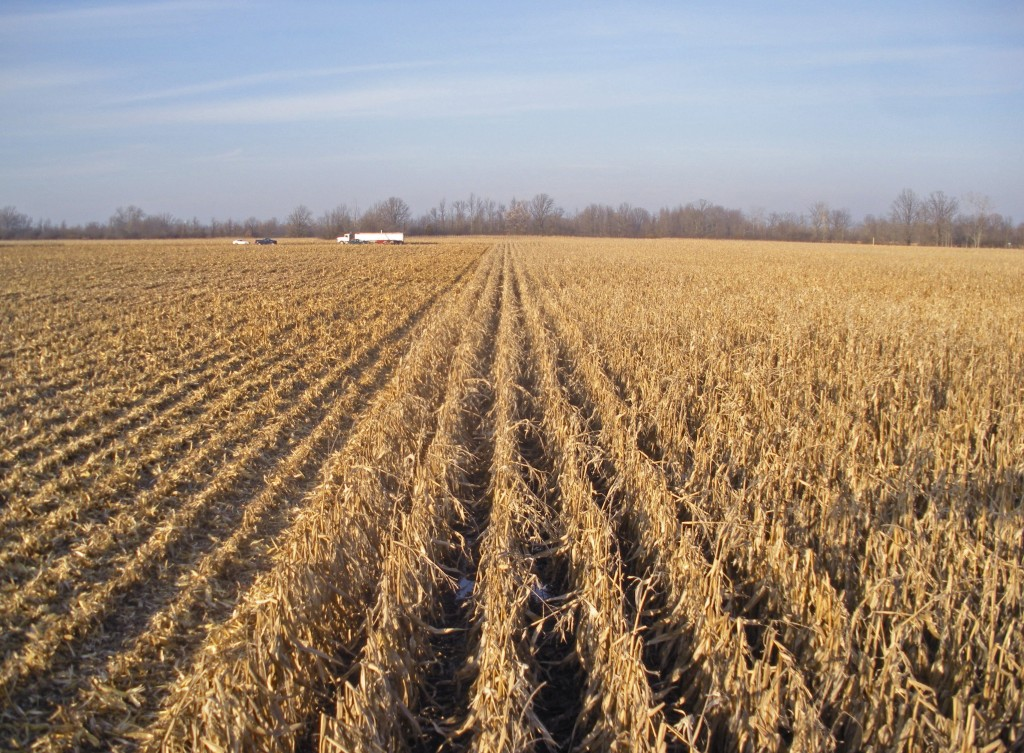 November 2012 Corn and Soybean harvest 067