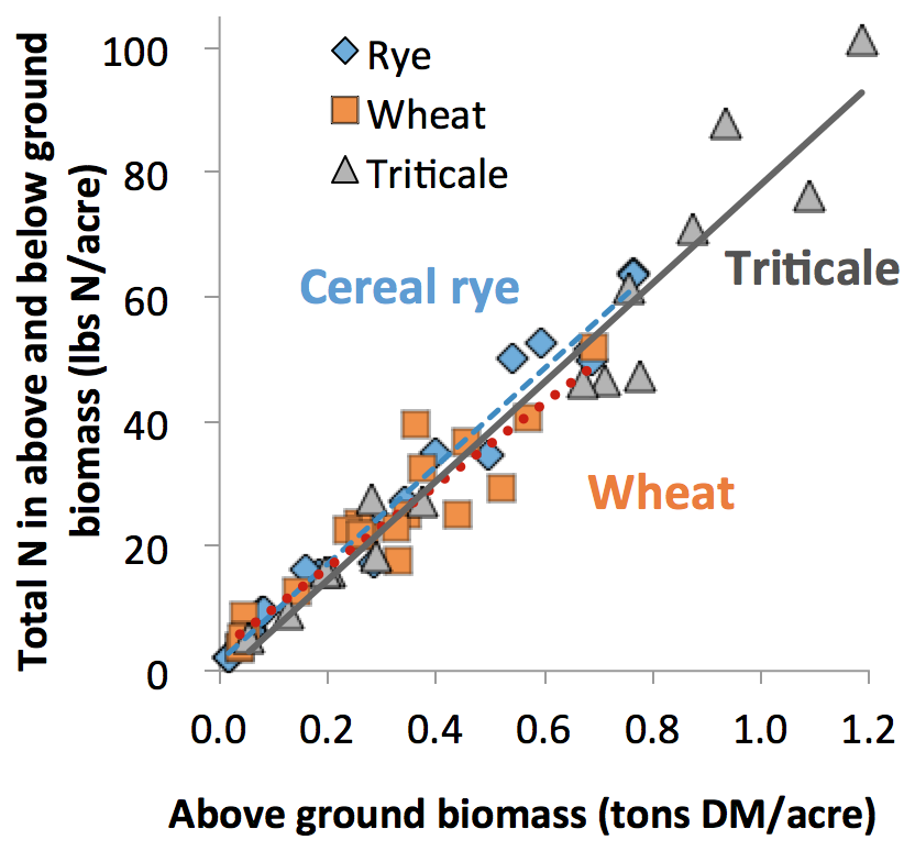 Figure 2: Relationship between above ground biomass of dry matter (tons/acre) and the total N (lbs/acre) uptake by winter cereal between seeding after corn silage and a killing frost in late fall or early winter.