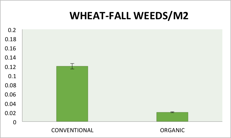 11/03/15) in conventional and organic wheat, averaged across the three previous crops in 2014 and two management treatments (high input and recommended management) at the Aurora Research Farm. Error bars represent standard errors of the means.