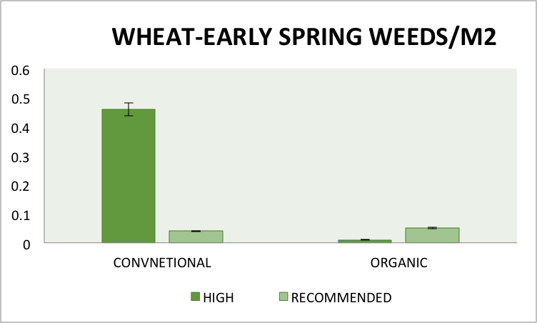 Fig.2. Early spring weed densities at the tillering stage (GS 2-3, 03/31/16) in conventional and organic wheat under high input and recommended management treatments at the Aurora Research Farm. Error bars represent standard errors of the means.