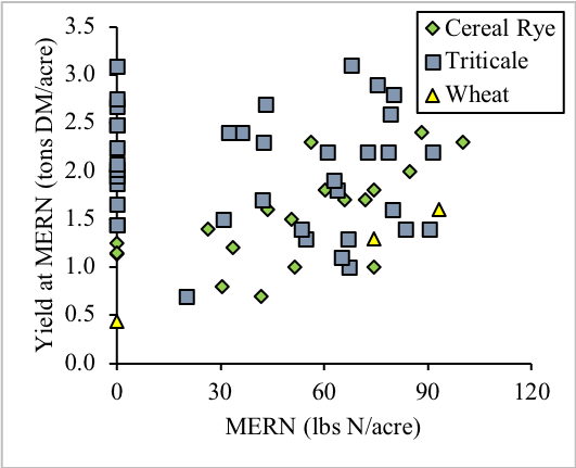 Forage winter cereal most economic rates of N (MERN) and yield at the MERN