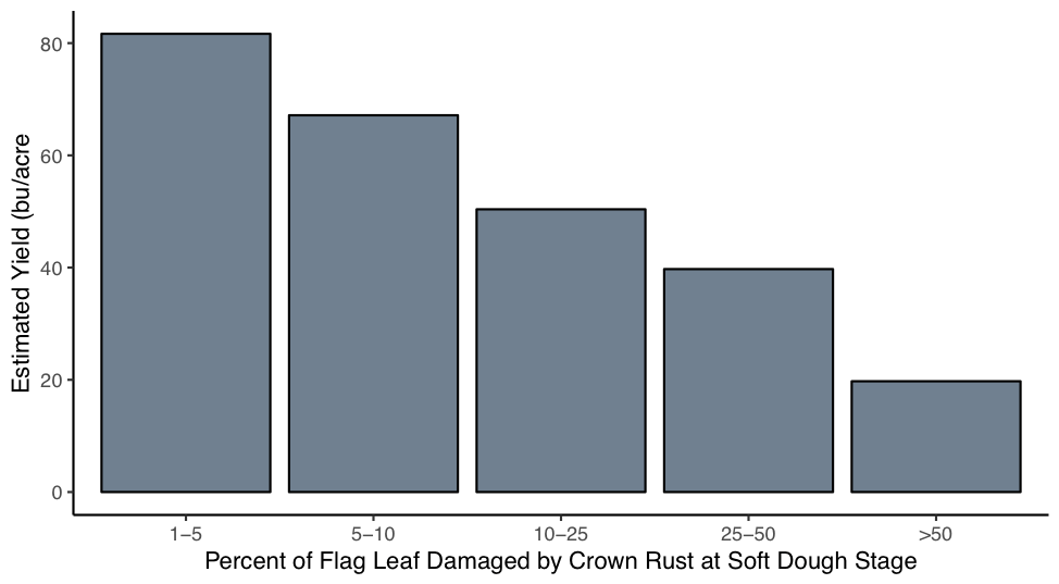 Bar chart showing effect of crown rust on oat yields
