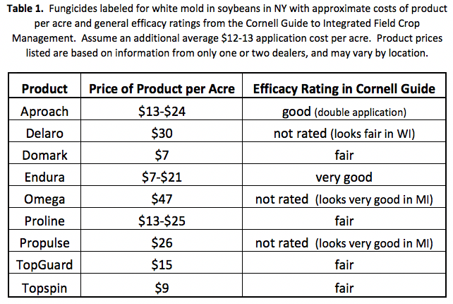 Fungicides for white mold in soybeans in NY