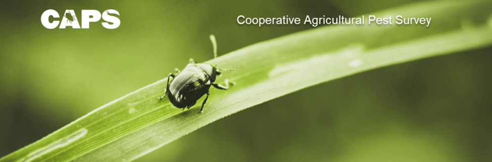 Cooperative Agriculture Pest Survey Header