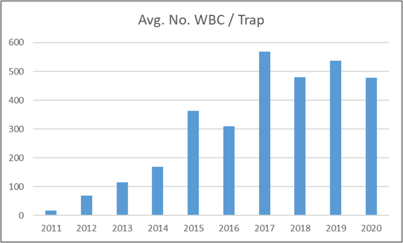 graph of moths caught from 2011 to 2020