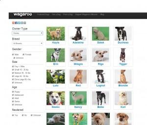 A snapshot of Wagroo.com