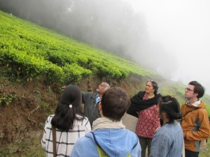 Class trip to nearby forests and tea plantations