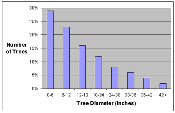 diameter class graph