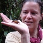 Kelly Zamudio, Ecology and Evolutionary Biology