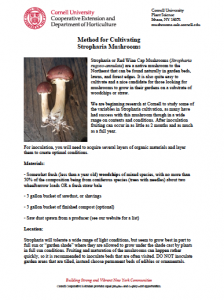 Stropharia Factsheet