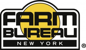 NYFB_logo1_R_lg copy