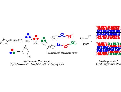 ring opening metathesis cyclohexene Novel tandem ring-opening/ring-closing metathesis ally embellished cyclohexene derivatives the tandem ring-closing/ring-opening metathesis reaction of.