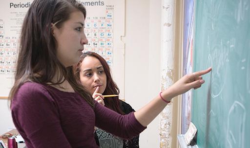 LSC tutors are fellow-students in Biology, Chem, Economics, Math, Physics, and Statistics.