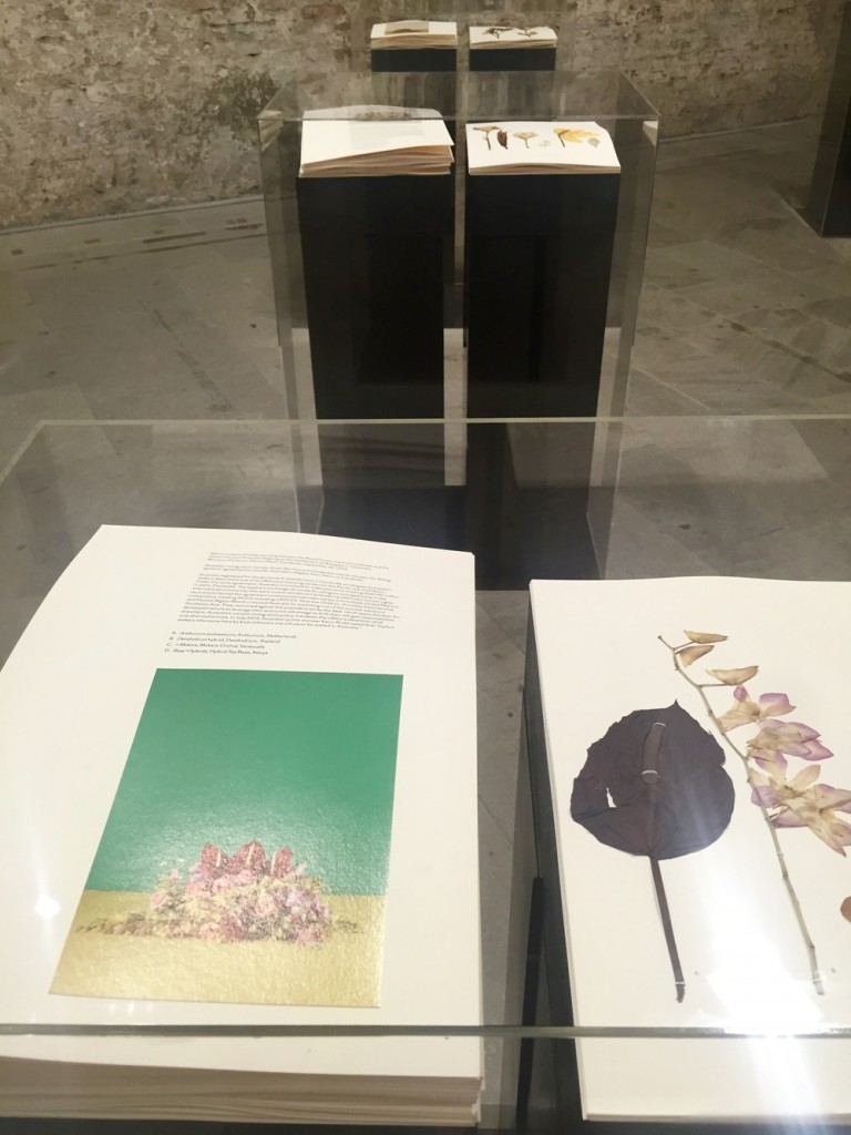 Paperwork, the Will of Capital (2015)   Taryn Simon   La Biennale di Venezia - Arsenale