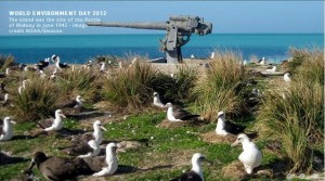 midway atoll birds weapon