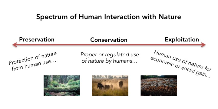 Interactions Between Humans And Nature
