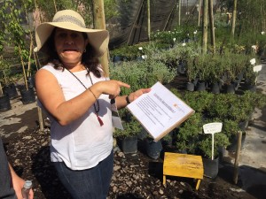 Monica giving us a tour of her native plant nursery