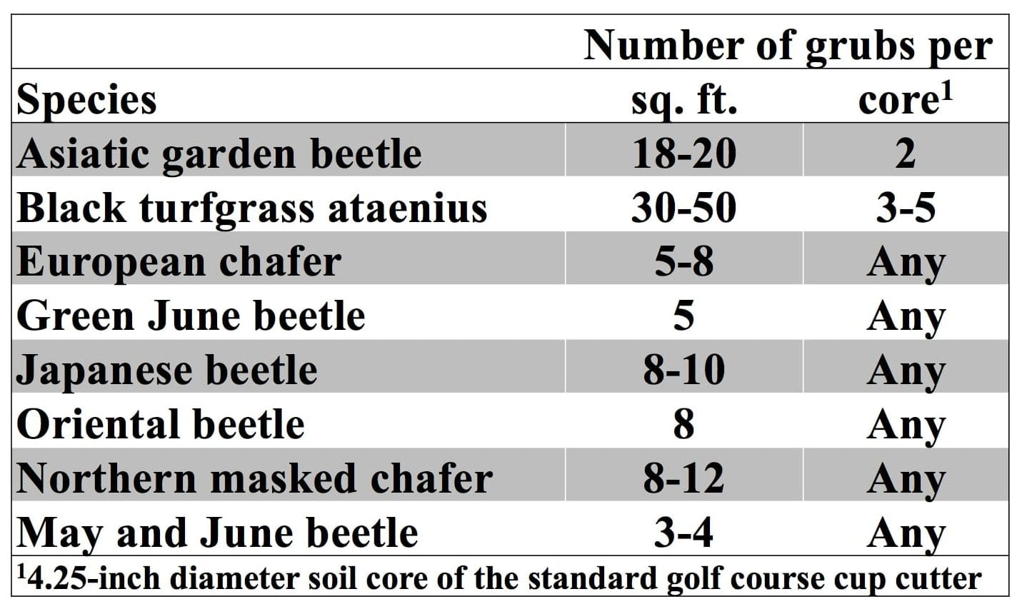 Number of grubs of each species before a treatment is justified