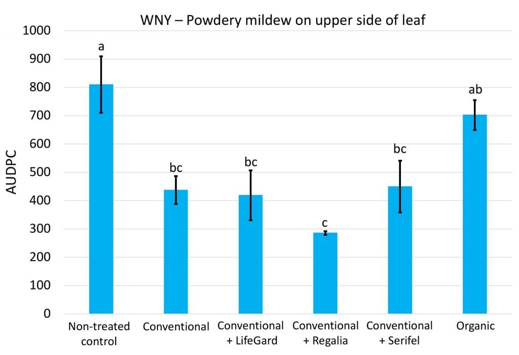 The conventional powdery mildew spray program alone, or when combined with LifeGard, Regalia, or Serifel significantly reduced disease compared to no treatment for cucurbit powdery mildew. Adding any of the biofungicides to the conventional spray program did not improve control compared to using only the conventional sprays. The organic (OMRI-listed products) treatment was not significantly different from either no sprays at all, or the conventional spray program.