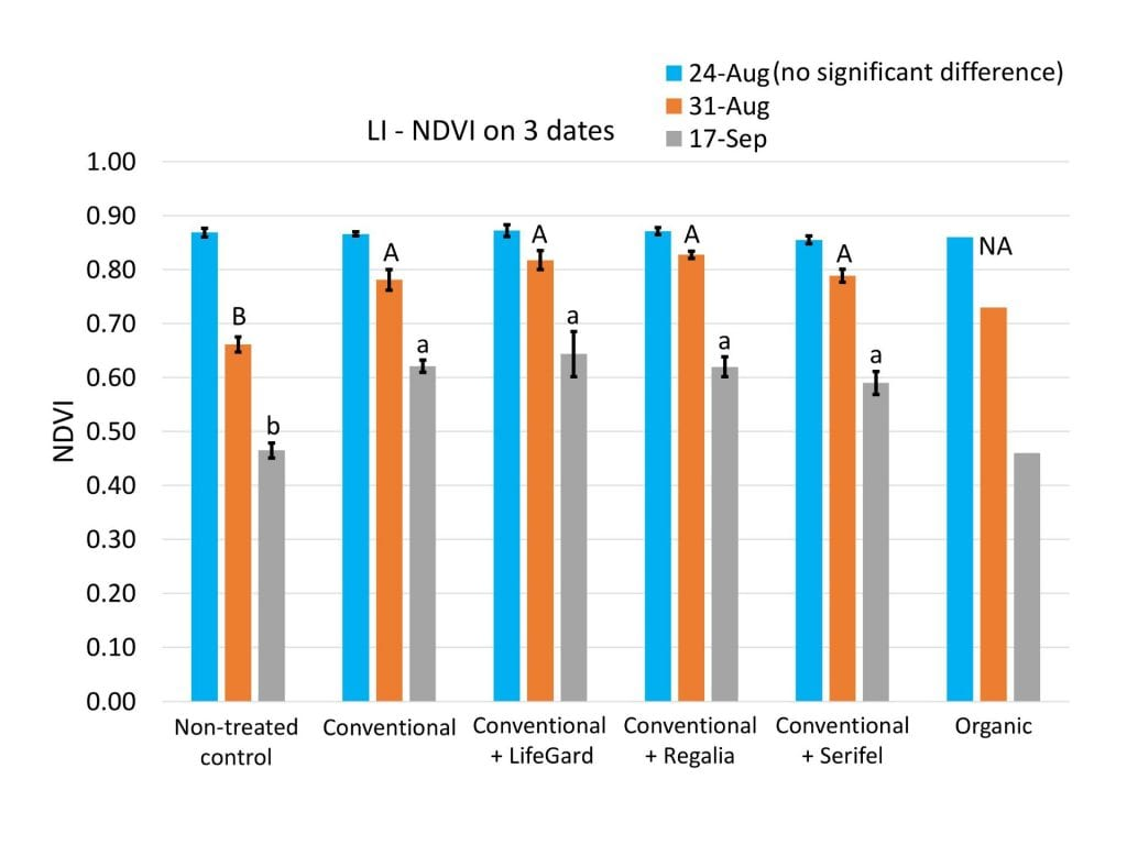 On the last two rating dates of the season (August 31 and September 17), NDVI values were significantly higher in the conventional powdery mildew spray program treatment and all three of the conventional + biofungicide treatments, compared to the plots that were not treated for powdery mildew. Adding the biofungicides did not significantly improve NDVI, compared to using only conventional products.