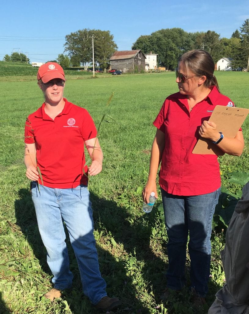 : Two women, both in red shirts, standing in the middle of a field. One holds two weeds. The other holds a clipboard and a water bottle.
