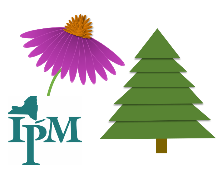 illustration of a pink daisy-shaped flower with orange center and a Christmas tree, next to the logo for New York State Integrated Pest Management