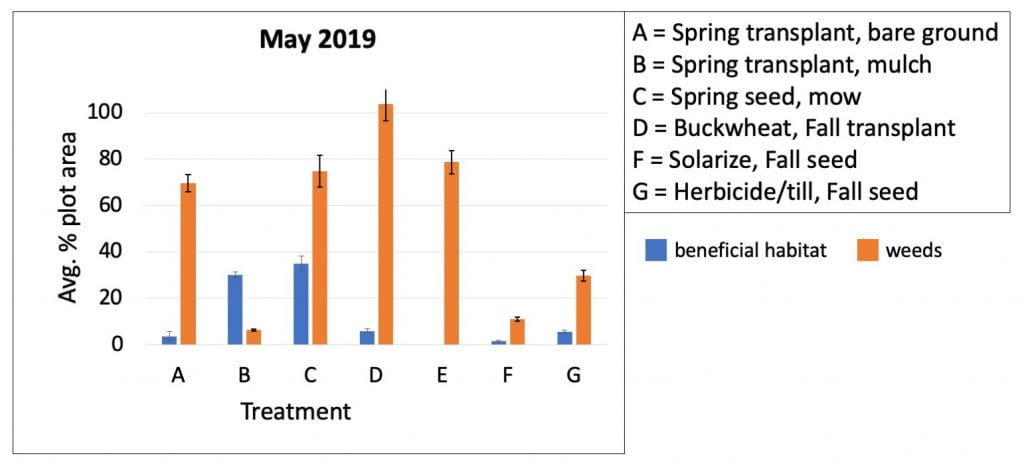 Bar graph shows the average percent of plots covered with either weed or beneficial habitat plants in May 2019. Weed control in the treatment (B) where transplants were mulched had the best weed control. The worst weed control was in treatment D, where seedlings were planted in Fall 2018 after a buckwheat cover crop.