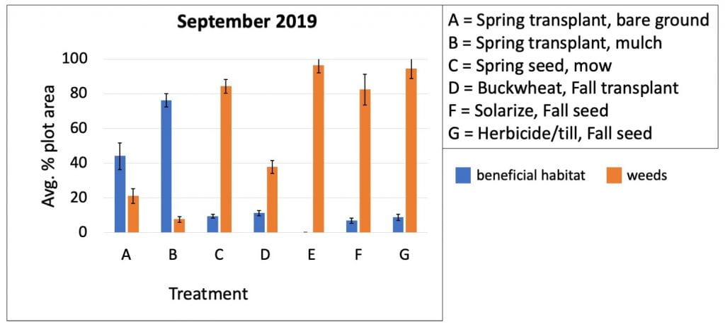 Bar graph shows the average percent of plots covered with either weed or beneficial habitat plants in September 2019. Weed control in the treatment (B) where transplants were mulched still had the best weed control. The worst weed control (besides the control plot where no beneficial habitat plants were planted) was in the three treatments using spring or fall direct seeding (C = spring direct seeding, F = soil solarization and fall direct seeding, G = herbicide and tillage with fall direct seeding).