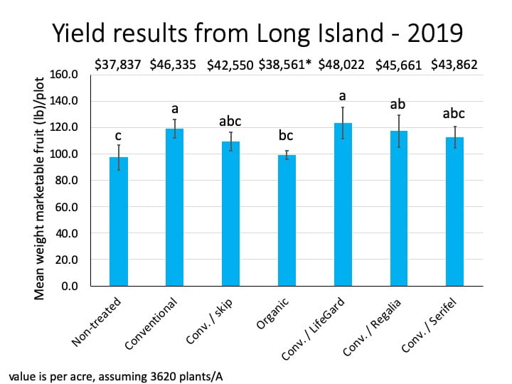 Bar graph showing the average weight of marketable fruit harvested from each treatment in the Long Island trial. The heights of the bars are fairly similar, but the bars representing the conventional, conventional/LifeGard, and conventional/Regalia treatments are the tallest. The value per acre of the marketable fruit harvested from the conventional, conventional + skip, organic, conventional/LifeGard, conventional/Regalia, and Conventional/Serifel treatments is $37,837, $46,335, $42,550, $38,561, $48,022, $45,661, and $43,862, respectively.