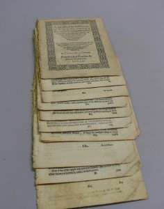 The book, separated into sections.